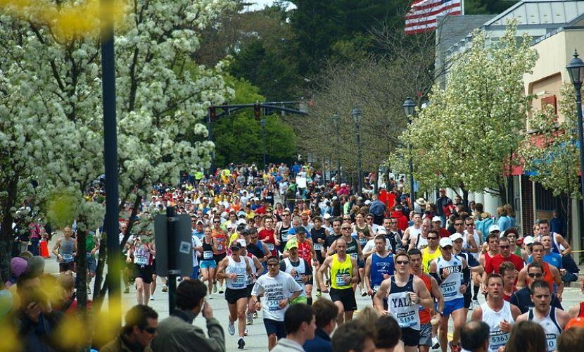 Transenne per maratone a noleggio